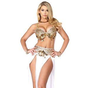 Arabian belly dancer halloween costume
